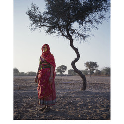 Kanli - Bishnoi people - Rajasthan, India. 4x5 inch color slide film.